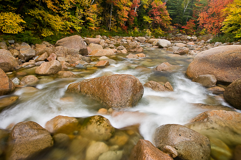 fall foliage photography in New Hampshire